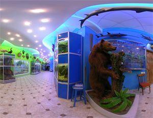 Посещение зоологического музея ТНУ им..В.И.Вернадского