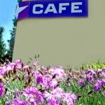 кафе гостиницы Спортивная